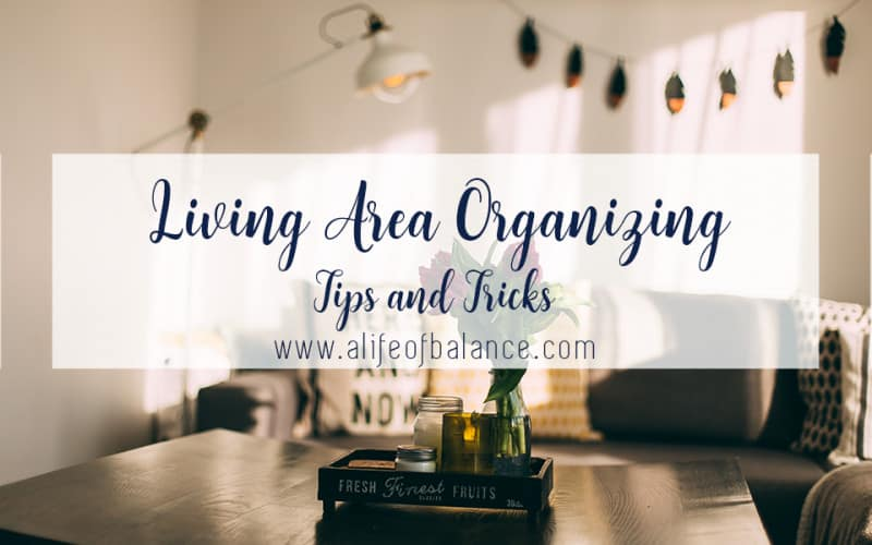 """An organized environment is essential to living a balanced life. And just as balance means doing what matters, so organization is about creating an environment that allows you to live your life, your way. This is particularly important in the living area. After all, it's where you do much of your """"living."""""""