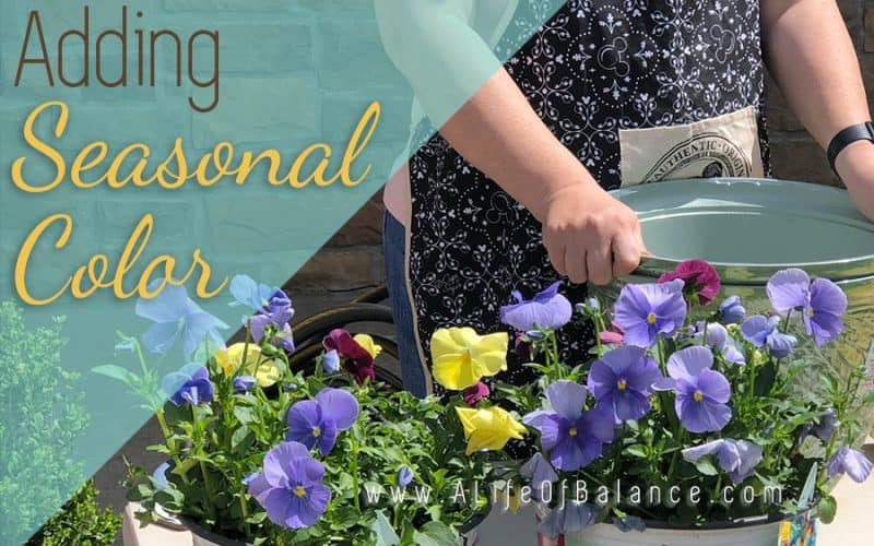 Adding Seasonal Color to Your Landscape